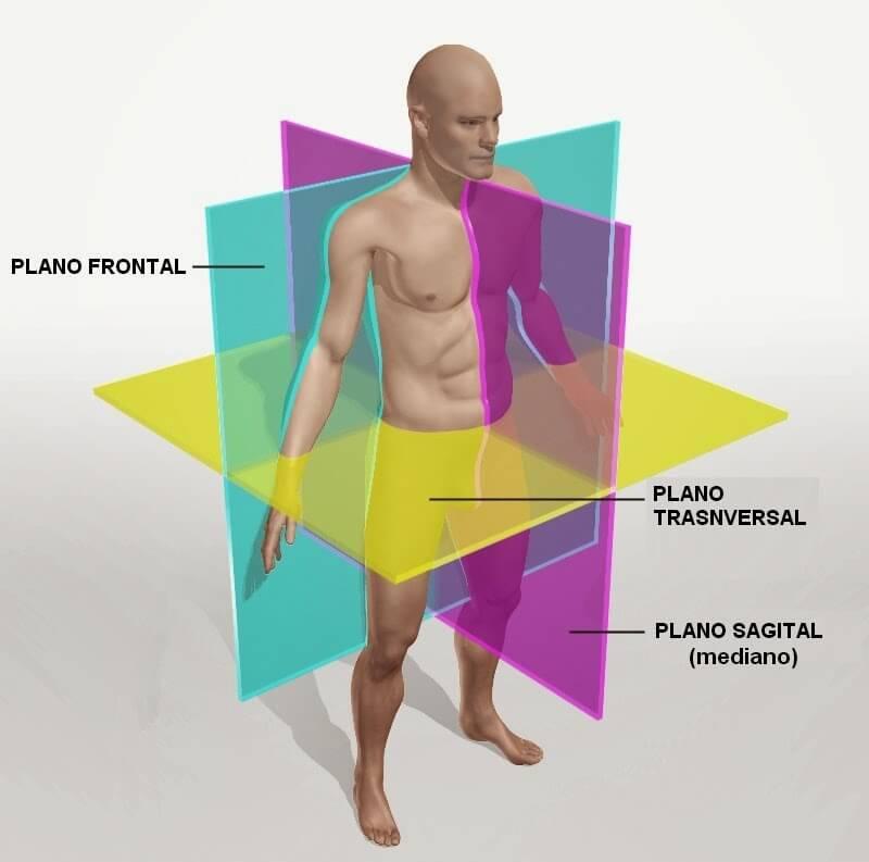 Planos del cuerpo